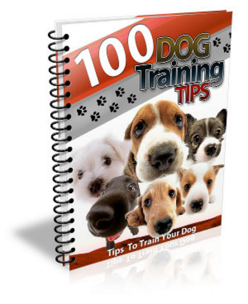 Product picture 100 Dog Training Tips With MRR