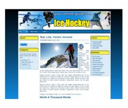 Product picture Ice Hockey Website