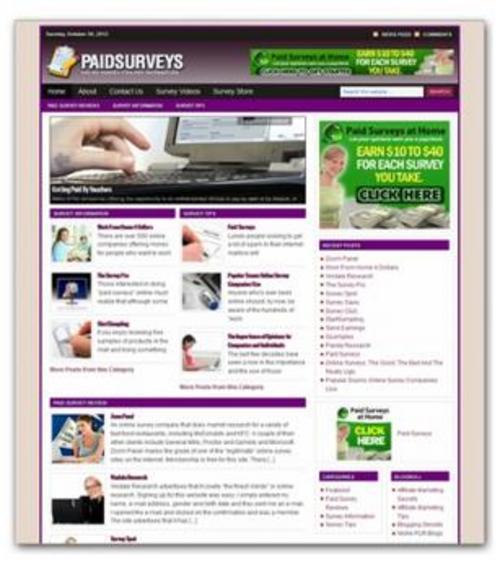 Product picture Online Paid Surveys Niche Blog