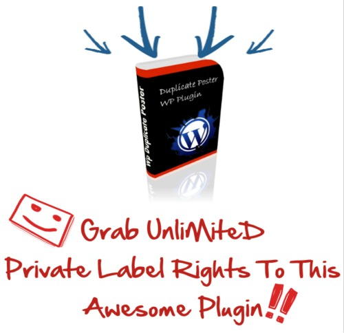 Product picture New PLR Niche Product Bundle